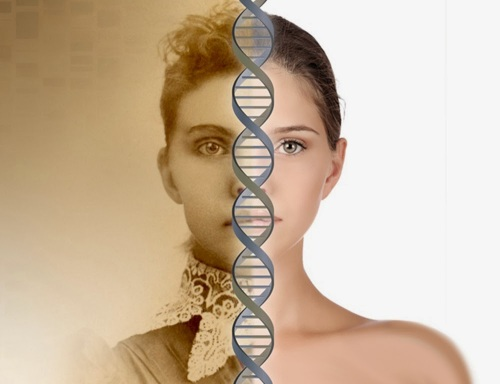 Past Lives DNA Memory